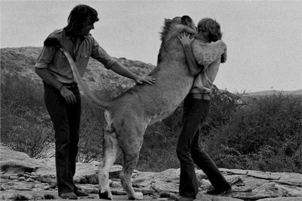 christian-the-lion-hug